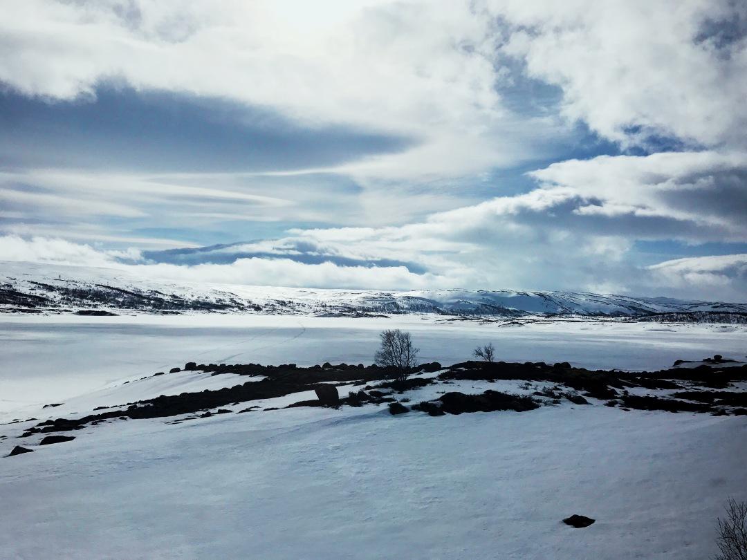 Oslo to Bergen train ride