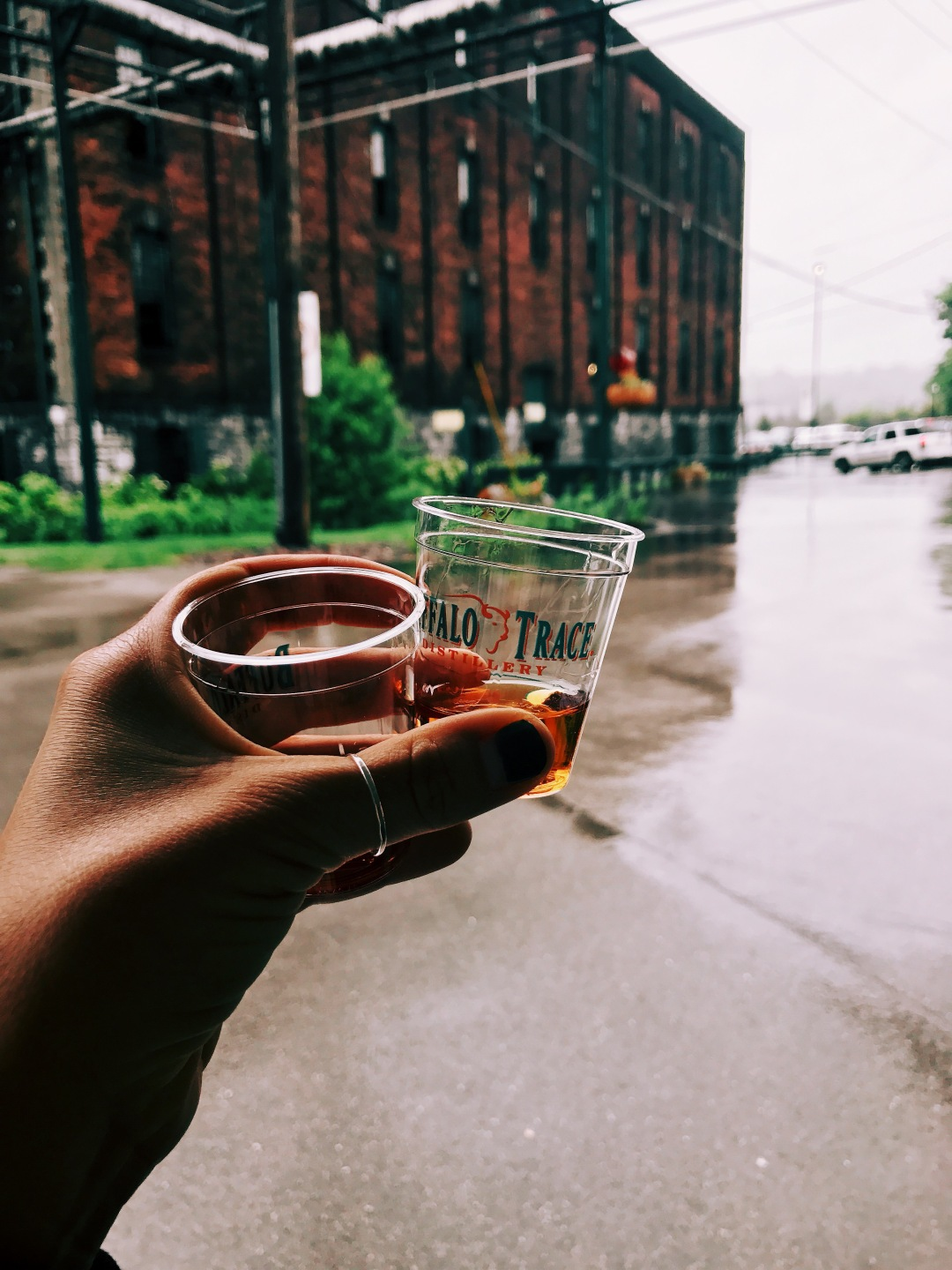 Buffalo Trace Distillery bourbon tour